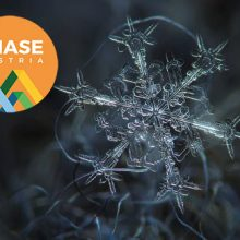Happy holidays and all the best in 2019 from PHASE Austria!